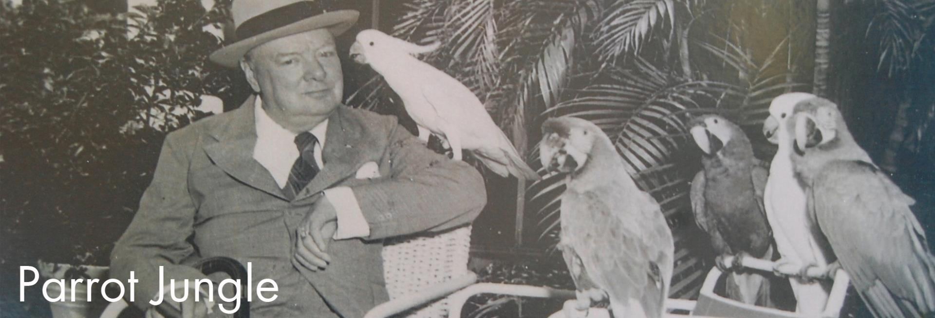 Churchill at Parrot Jungle